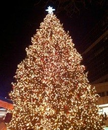 holiday-tree-lightings-in-boston